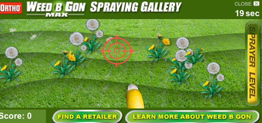 Spraying Game
